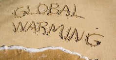 Government strategies to climate-proof the economy weakened.