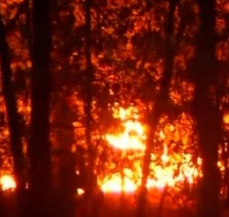 Wildfires are one of the threats from global warming to US families