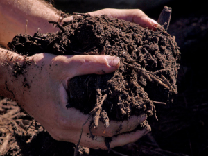 Deeper topsoil can fight climate change.