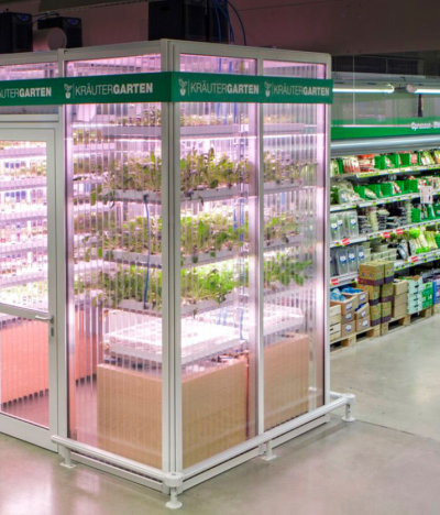 Hydroponics in grocery stores